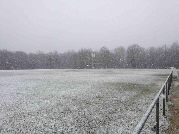Ecole de rugby - Tournoi M6, M8, M10, M12 annulés