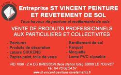 St Vincent Peinture